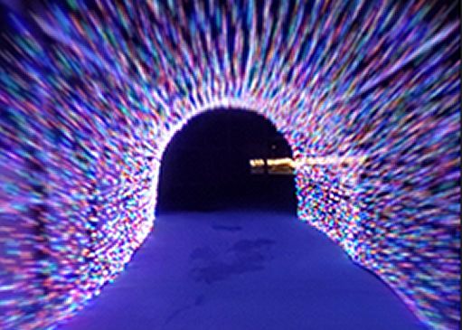 Walking through the multi colored light tunnel at Animal Adventure Park - Jungle Bells